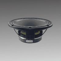 SD-LF12G30112 INCH SPEAKER DRIVE -75MM VOICE -180MM MAGNET